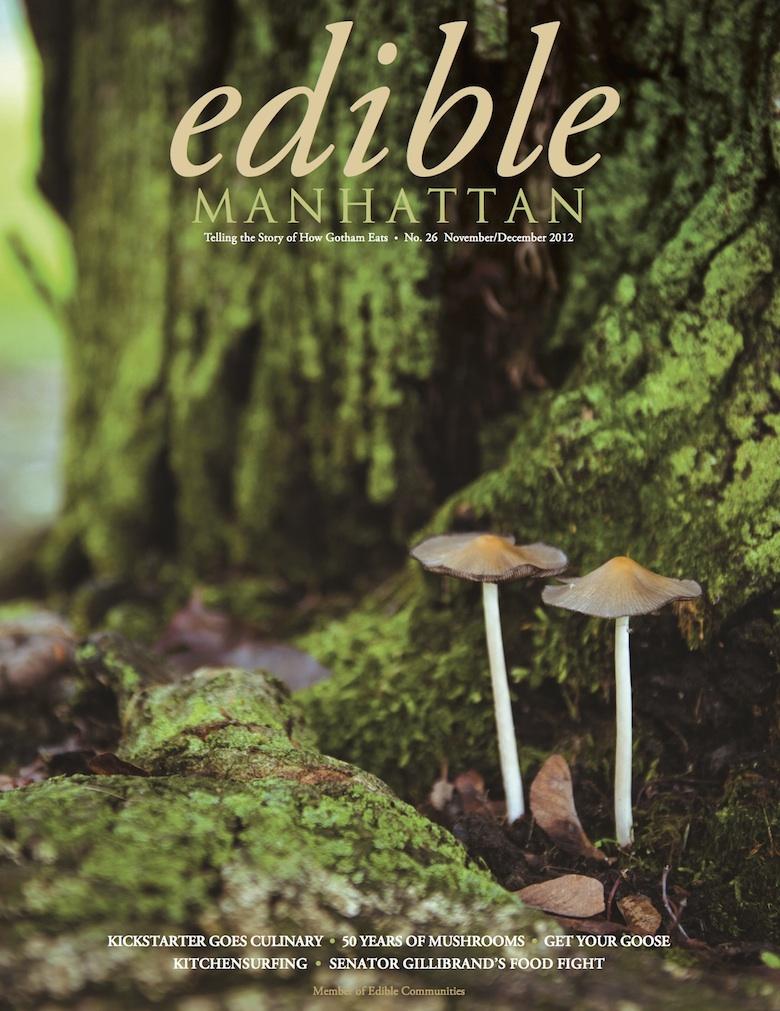 EM26-Cover-NoBarcode-HiRes copy