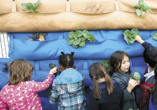 children play with woolly pockets, live plants nested in hanging cloth pockets