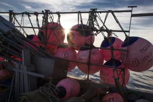 Spearfishing_ChadHeird-003