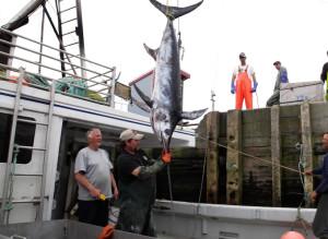Spearfishing_ChadHeird-007