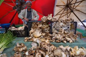 Turkey_2013_market_mushrooms