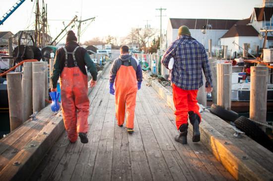 dock to dish lindsay morris