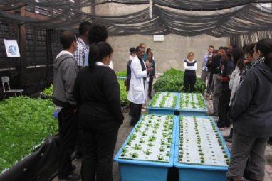 Food & Finance High School/Nan Shipley