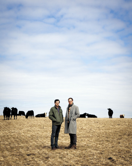 Home on the range. Alex Dimin and Dan Honig help small Pennsylvania farmers get their grassfed beef to city chefs.