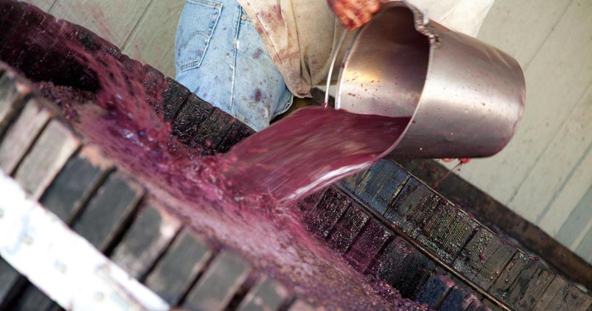 Facebook organic wine journal