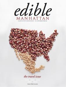 em37 travel cover