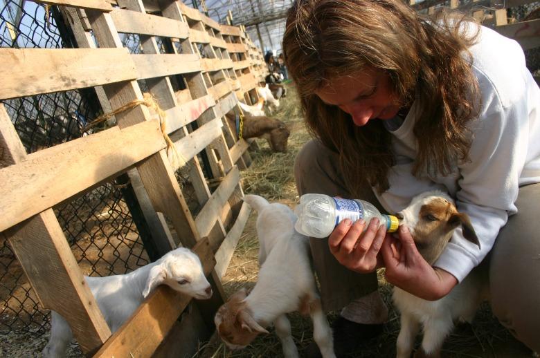 Karen Catapano feeding her babies