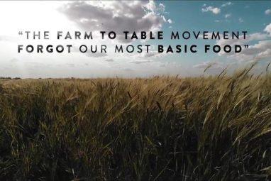 the grain divide