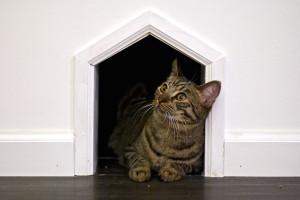 meow-parlour-18