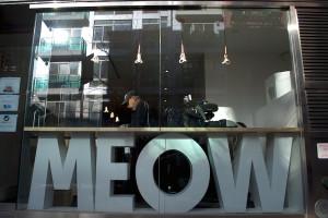meow-parlour-33