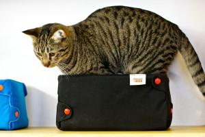 meow-parlour-4