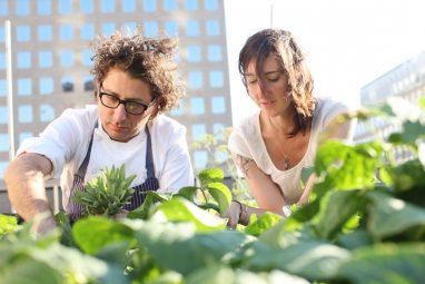 Kristen Schafenacker and Eric Korsh on the Rooftop Farm - Horizontal - credit Melissa Hom