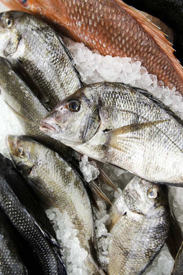 The Trouble and Truth About Buying Sustainable Seafood in New York City