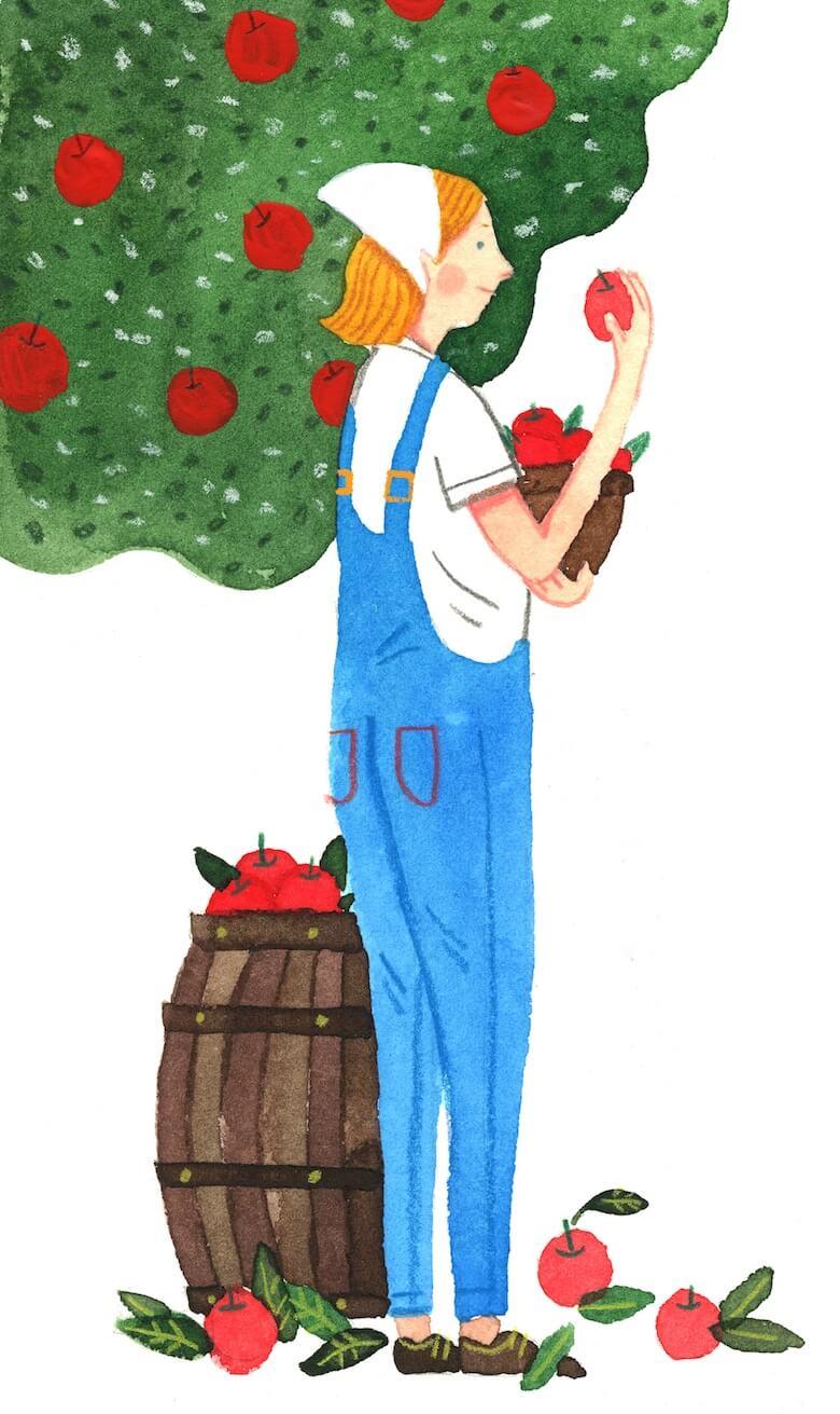 biodynamic orchard cider biltonen