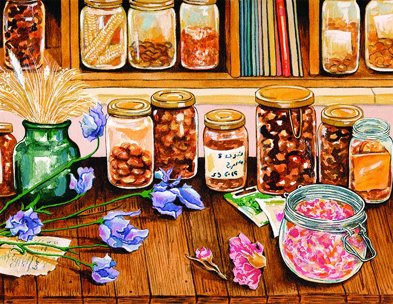 Palestine-Heirloom-Seed-Library
